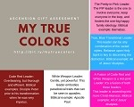 The My True Colors Leadership Assessment